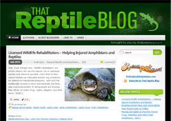 That Reptile Blog