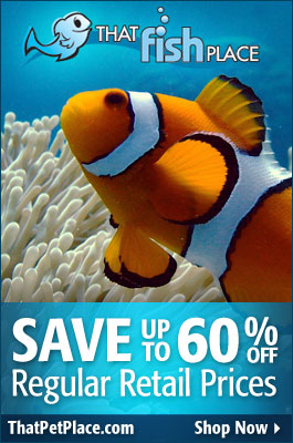 Discount Aquarium Supplies at THat Fish Place - That Pet Place