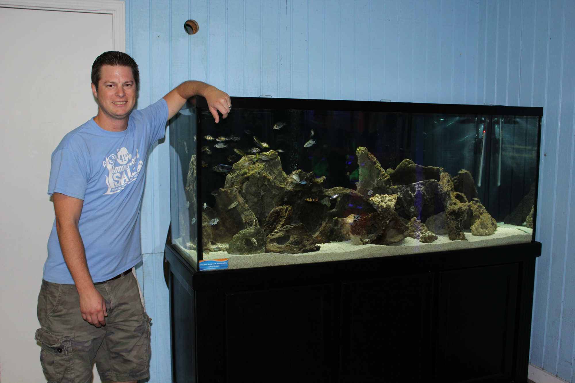 Our Newest Aquarium Display An African Cichlid Utopia Tank