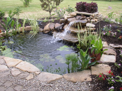 Backyard ponds a quick springtime maintenance and care guide for Backyard pond maintenance